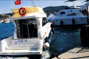 Teknede hasret giderdiler