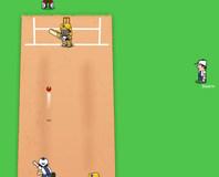 Kriket oyunu