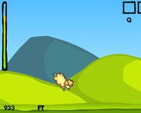 Koyun fırlatma
