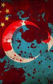 Çinden Doğu Türkistan açıklaması