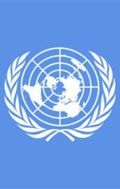 BM Yemende insani acil durum ilan etti