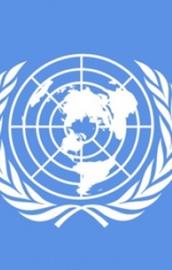 BMden İsraile işgale son ver çağrısı