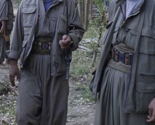 Üst düzey PKK yöneticisi öldürüldü