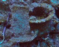 Su altından 2100 yıllık tarih çıktı