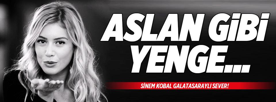 Aslan yenge