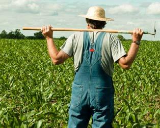 Esnafa faizsiz kredi çiftçiye karşılıksız para