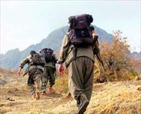 701 hain öldürüldü
