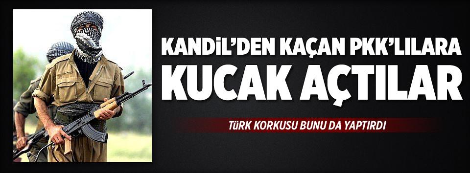 Kandilden kaçan PKKlılara kucak açtılar