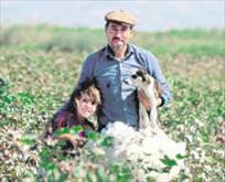 Çiftçiye 6 müjde
