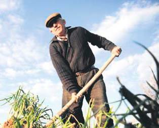 Atıl arazilerde tarım dönemi