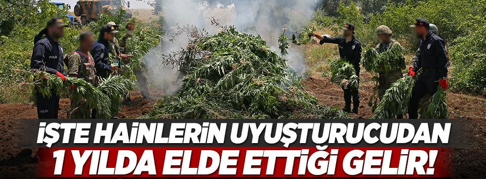 İşte PKKnın zehirden elde ettiği gelir