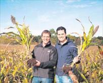 Genç çiftçilere 450 milyon hibe
