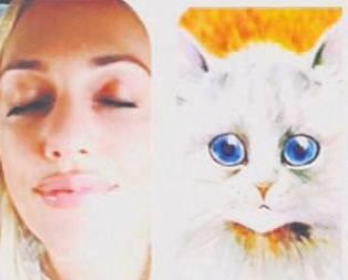 Kedi Meryem!