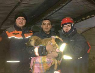 Kuyuya düşen köpeği liseli öğrenciler kurtardı