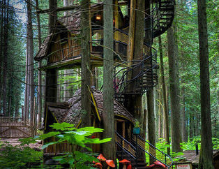 Büyüleyici ağaç evler