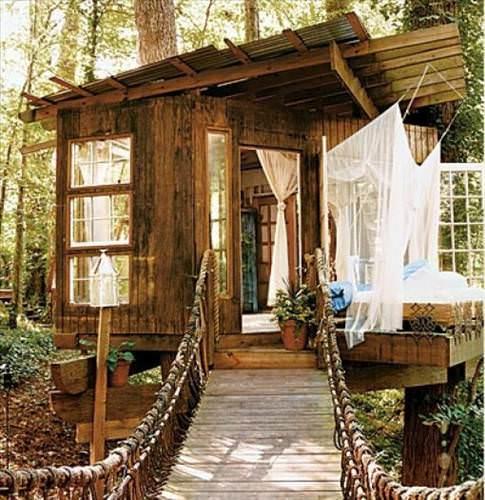 Harika ağaç evler
