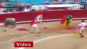 Boğa matadorlara arenayı dar etti!