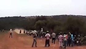 Yarışan atlar seyircileri biçti!