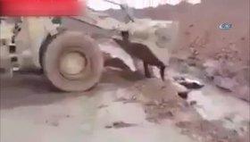 Haşdi Şabi'den kan donduran görüntüler